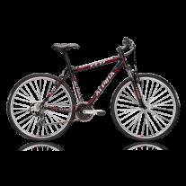 Rower ALPINA ECO C20 model 2014